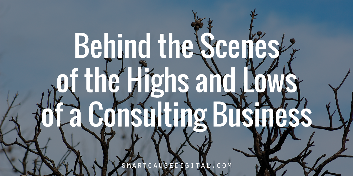 Highs and Lows of a Consulting Business